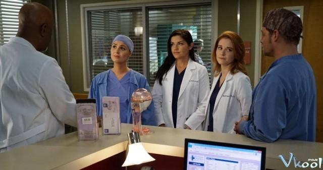 Xem Phim Ca Phẫu Thuật Của Grey 14 - Grey's Anatomy Season 14 - Vkool.TV - Ảnh 1